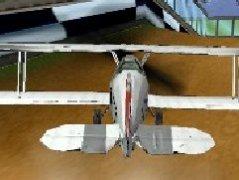滑翔机大赛