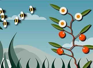 你比植物聪明吗