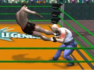 3D摔跤比赛