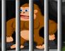 被困的大猩猩逃脱
