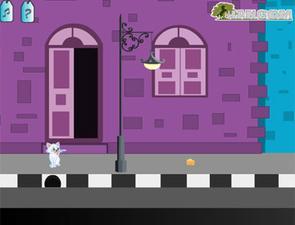 小猫咪找主人